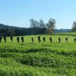 2014-11-30-tourenbericht-nurtschweg-04