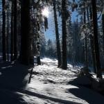 2017-12-05-Tages-Schneeschuhtouren-2018-3