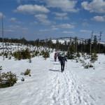 Schneeschuhtour-marz2019-bay-wald-16