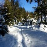 Schneeschuh_01