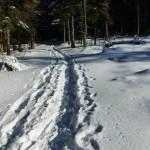 Schneeschuh_02