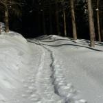 Schneeschuh_03