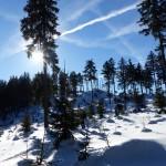 Schneeschuh-09