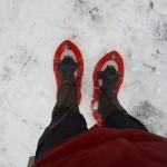 schneeschuh01